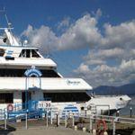 湯の川町木はらと観光遊覧船ブルームーンにあるテルヒサのサイン