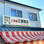 TERUの実家の近所で幼い頃に買い物に訪れていた食料品店の三角屋